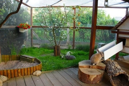Outdoor hutches bunnies at home for Cage lapin exterieur